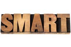 Slim woord in houten type stock afbeelding