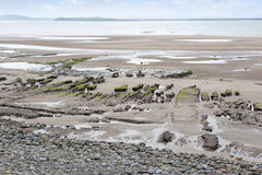 Slimey mud banks at Beal beach. Unusual mud banks at Beal beach in county Kerry Ireland on the wild Atlantic way Royalty Free Stock Photo