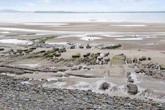 Slimey mud banks at Beal beach Royalty Free Stock Photo