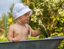 Slimme peuter met komkommer in tuinkruiwagen Royalty-vrije Stock Foto