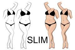 Slimness和减重 库存图片