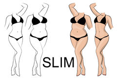 Slimness and weight loss Stock Image