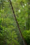 Sling Bridge Royalty Free Stock Images