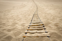 Sling wood stair on desert. Sling wood stair on the sand Stock Photos