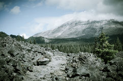 Slinga för Mt St Helens Royaltyfria Foton