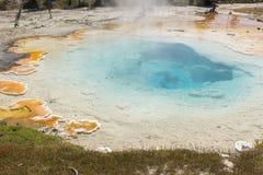 Slinga för springbrunnmålarfärgkruka mellan gayser som kokar gyttjatips och brända träd in i den Yellowstone nationalparken royaltyfri bild
