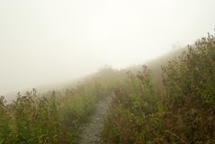 Slinga i molnen Arkivfoto