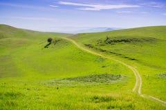 Slinga på de grönskande kullarna av den södra fjärden, San Francisco Bay område, San Jose, Kalifornien arkivbilder