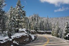 Slinga Ridge Road royaltyfri fotografi