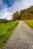 Slingan och hösten färgar på Moses Cone Park, på den blåa Ridge Par Royaltyfria Bilder