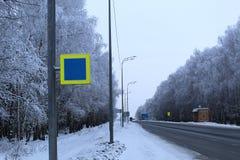 Slingavinterträd som planteras på kanterna av vägen royaltyfria foton