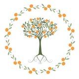 Slinger van bladeren, sinaasappelen en oranje bloesems met oranje binnen boom vector illustratie