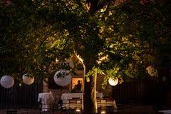 Slingers en decoratie op een grote boom Een partij stock afbeelding