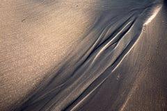 Slingor i sand royaltyfri fotografi