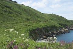 Slingor på ön av hermen Arkivfoton