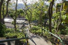 Slingorna i Yang Ming University royaltyfria foton