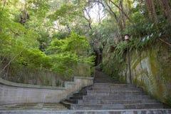 Slingorna i Yang Ming University arkivbild