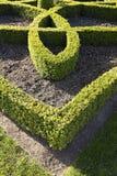 Slingra sig för Topiary Royaltyfria Bilder