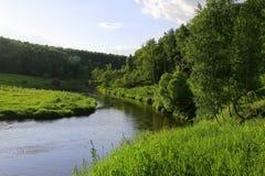 Slingrande flod i mitt av en skog i solig dag Royaltyfri Foto