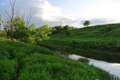Slingrande flod i mitt av en skog i solig dag Fotografering för Bildbyråer