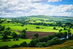 Slingrande flod som gör dess väg till och med frodig grön jordbruksmark Royaltyfri Bild