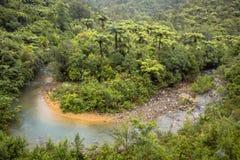 Slingrande flod till och med Forested kullar av Nya Zeeland Royaltyfri Foto