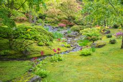 Slingrande ström som fodras med blommor i frodig trädgård royaltyfria foton
