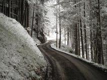 Slingrande väg för vinter Arkivbilder