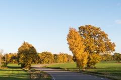 Slingrig väg i ett lantligt landskap vid nedgångsäsong Arkivbild