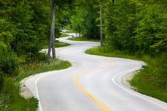Slingrig väg i skog Arkivfoto