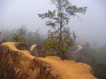 Slingrig väg till och med dimma Arkivbilder