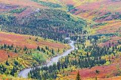 Slingrig väg i den Denali nationalparken i Alaska Arkivfoton