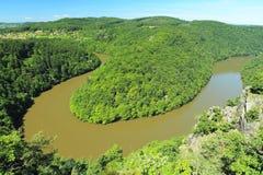 Slingringar av floden Moldau Royaltyfri Foto