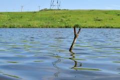 Slingshot dla łowić w rzece z odbiciem zdjęcie stock