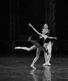 Slip the black swan-ballet Swan Lake. In December 20, 2014, Russia's St Petersburg Ballet Theater in Jiangxi Nanchang performing ballet Swan Lake Stock Images