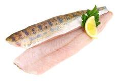 Slipmaskin - Pikeperchfiskfilé arkivbilder