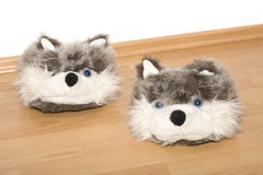 Slippers. House slippers on the floor Stock Photography