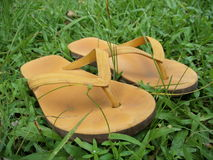 Slippers in the meadow Royalty Free Stock Image