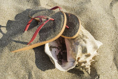 Slippers in the sand on the beach Royalty Free Stock Image