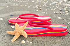Slippers on sandy beach Stock Images