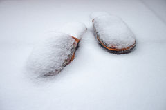 Slippers in snow Royalty Free Stock Photos
