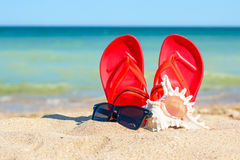 Slippers, sunglasses and shell in the sand stock images