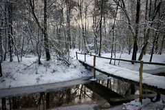 Slippery bridge. Snowy bench under the tree in the early morning in december with a blue sky and trees covered with snow countyside in the netherlands bridge Stock Photos