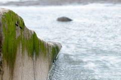 Slipway with seaweed Royalty Free Stock Photos