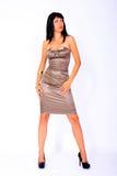 slitage kvinna för härlig satäng för klänning elegant fotografering för bildbyråer