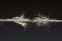 Slitet rep som är klart att bryta royaltyfri foto