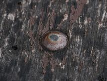 Slitet spika i ett stycke av mörker, splittrat trä royaltyfria foton