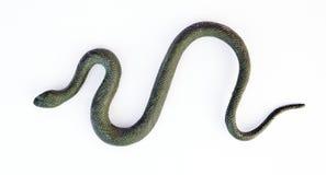 Slithering Fake Rubber Green Snake Royalty Free Stock Image