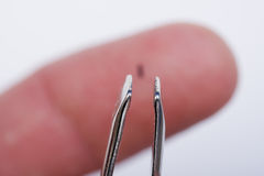 Sliver. Closeup of tweezers about to remove a sliver in finger royalty free stock photos