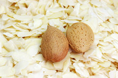 Slivered almonds Stock Photography